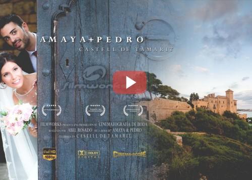 Video Castell Tamarit